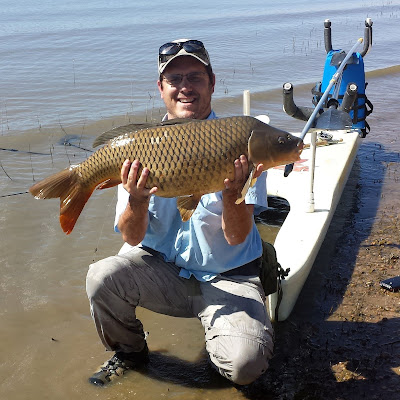 large 24lb common carp caught on a fly from a stand up paddle board