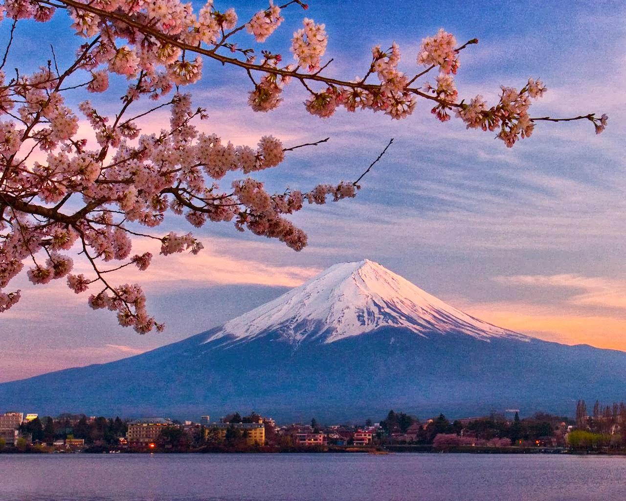 Paket Tour Wisata Halal Jepang Murah