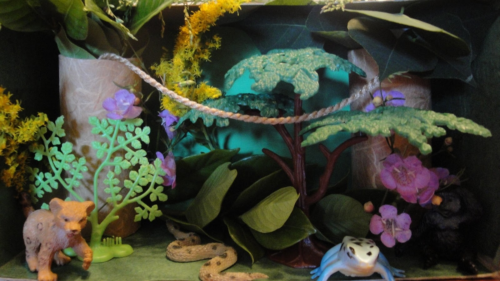 Example of Rain Forest Diorama http://homeschoolingmom2mags.blogspot.com/2011/10/rainforest-diorama-and-flapping-bats.html