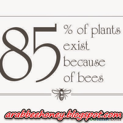 The benefits of exist of bees