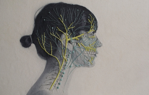 03-Central-System-Juana-Gómez-Embroidered-Anatomy-exposing-Internal-Physiology-www-designstack-co