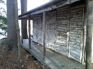 Birch Log Cabin