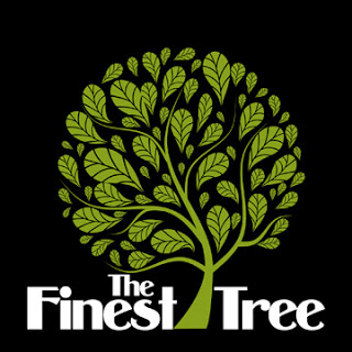 Lirik Lagu The Finest Tree Lupa Bawa Nyali