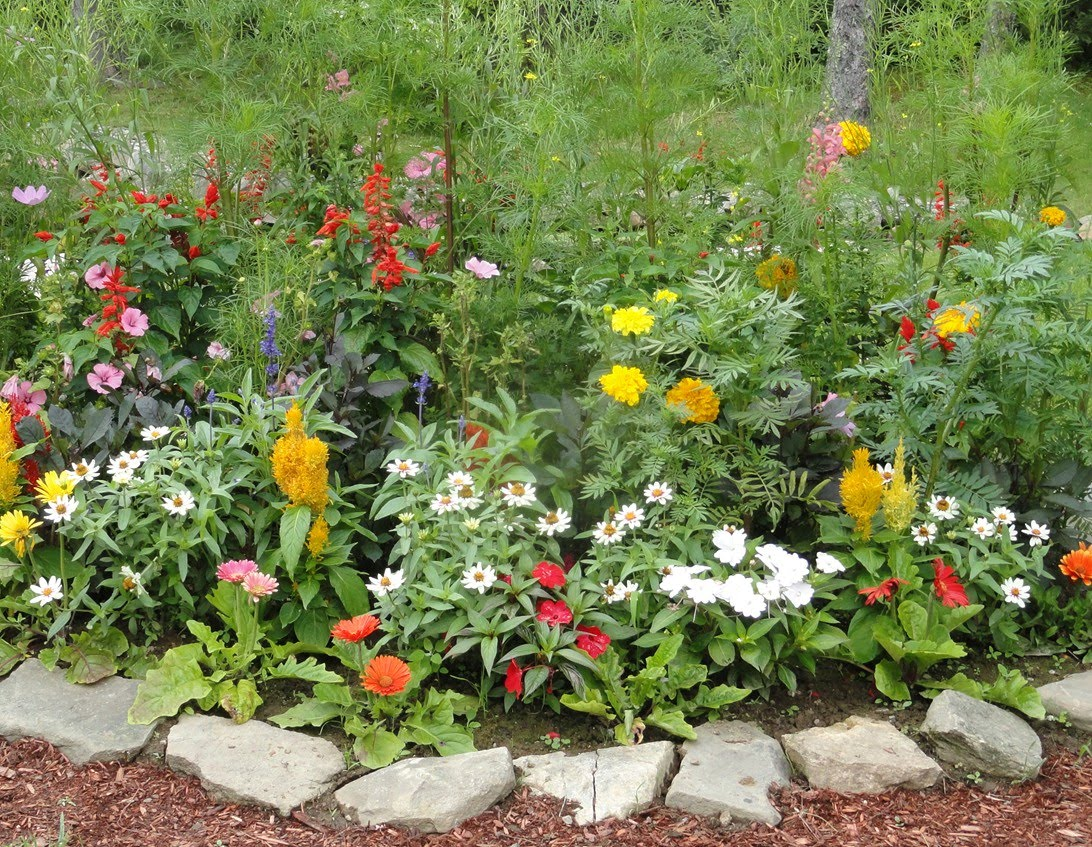 Simple Backyard Flower Gardens : You dont need to buy expensive edging or brick Slowly accumulate