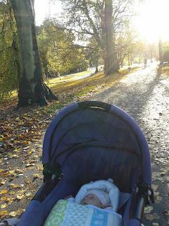 Valley Gardens Park, Harrogate