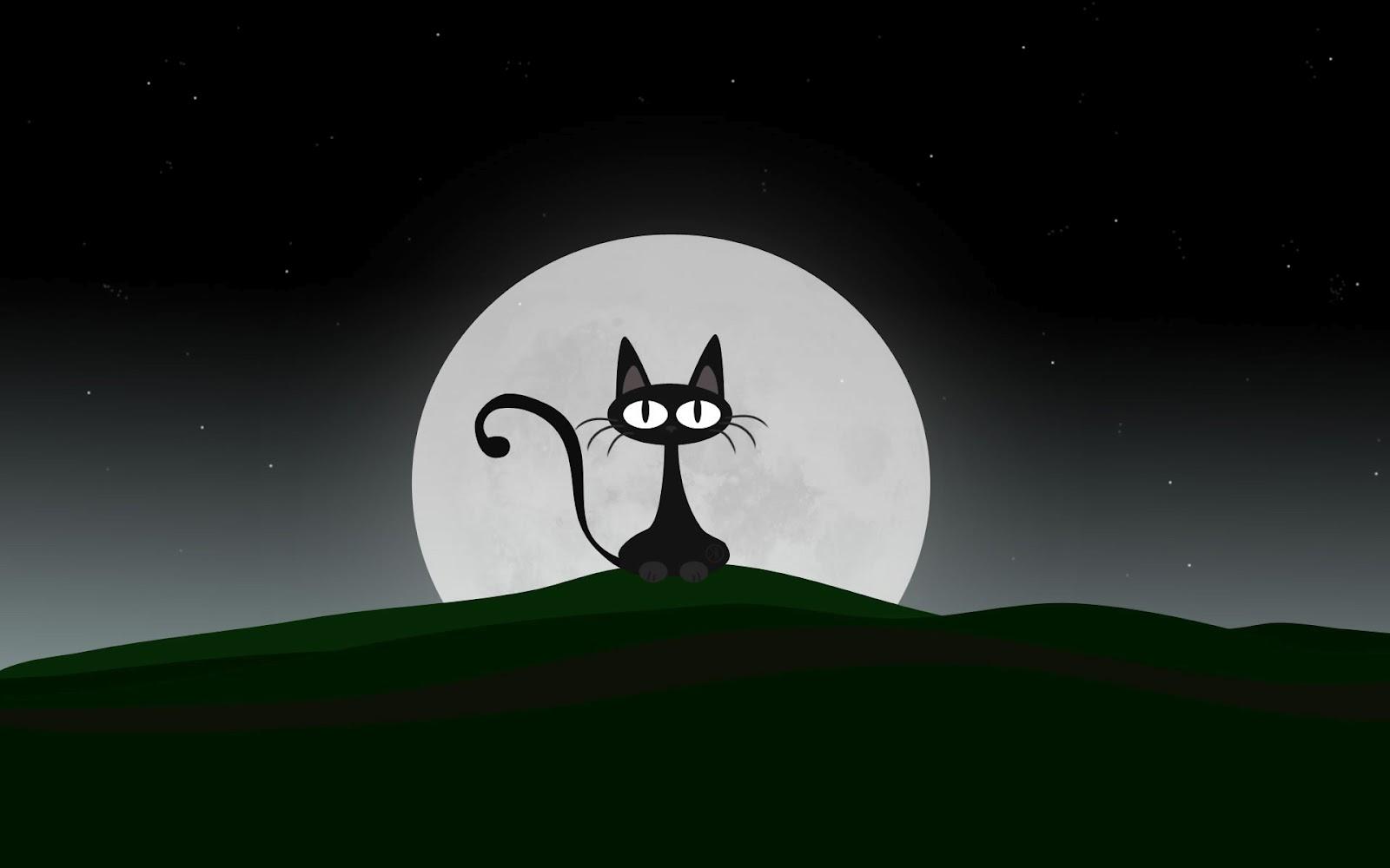 Hoy Me Cruce Con Un Gato Negro Pobre Gato Negro