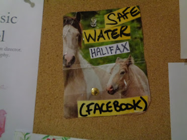 Safe Water Halifax - facebook