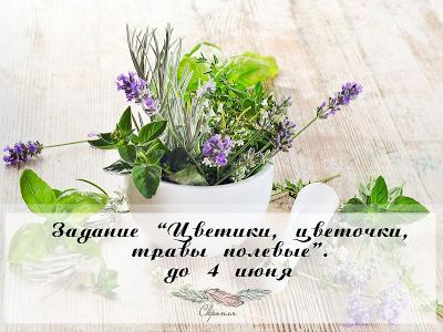 """+Задание """"Цветики, цветочки, травы полевые..."""" до 04/06"""