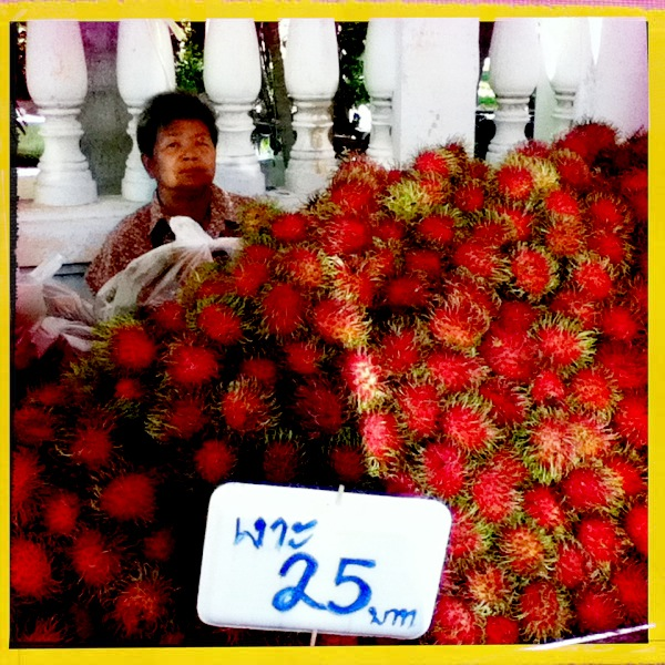 Red Fruit With Spikes http://trunksup.blogspot.com/2011/07/thailands-exotic-fruits.html