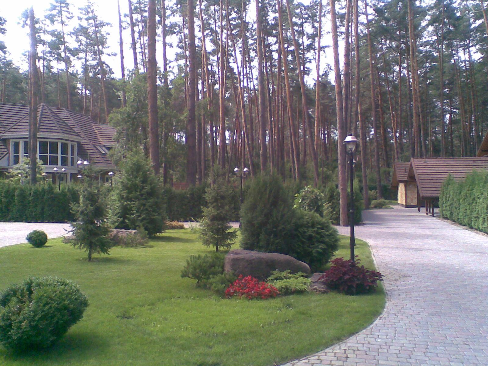 koncha-lesa