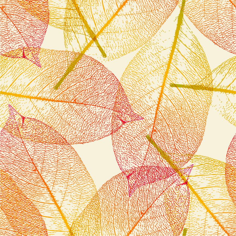 free vector がらくた素材庫: 秋の枯葉の背景 leaf autumn vector