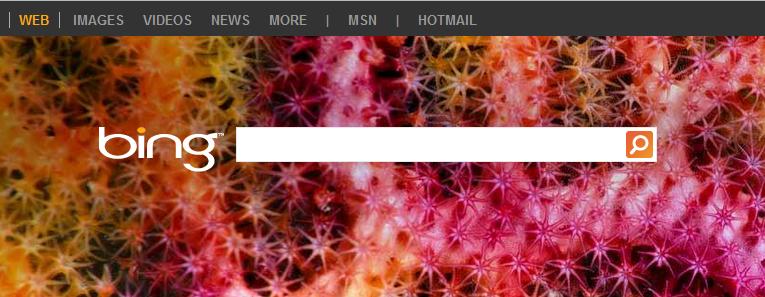 Msn, Bing arama motoru