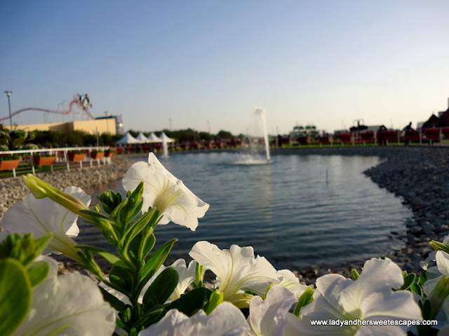 lakes at Dubai Miracle Garden