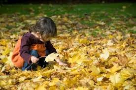 Autumn for kids