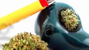 descriminalização da cannabis nos EUA