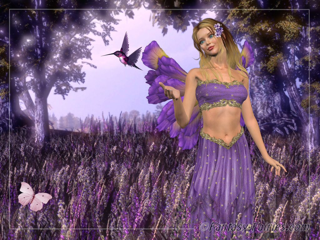 http://2.bp.blogspot.com/-1zxLlAxrkDo/Tdlfc6IzMrI/AAAAAAAAAlk/LhrlM3X8zkk/s1600/Lavendar-Fairy-Wallpaper-fairies-6350130-1024-768.jpg