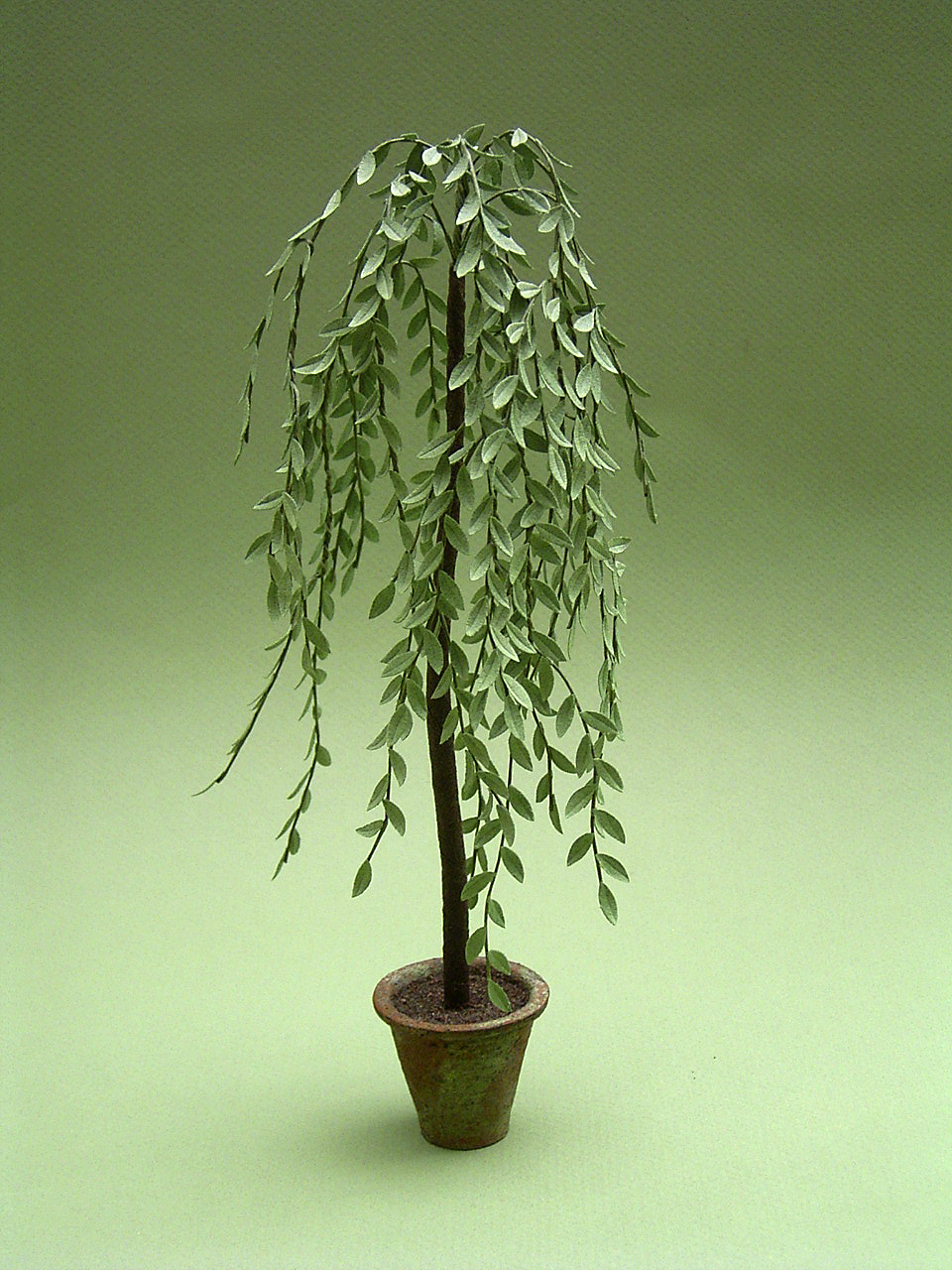 The miniature garden ornamental trees for Small ornamental weeping trees