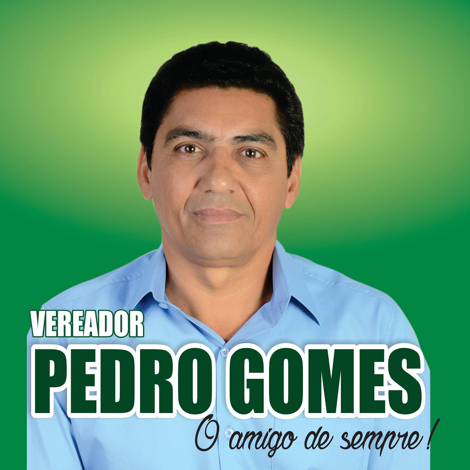 Ver. Pedro Gomes