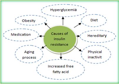 Insulin sensitivity vs insulin resistance ~ DIABETES MELLITUS