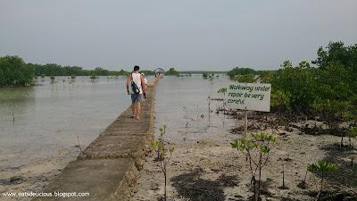 Olango Island in Cebu travel diary marine sanctuary board walk 4