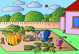 Garden Cartoon