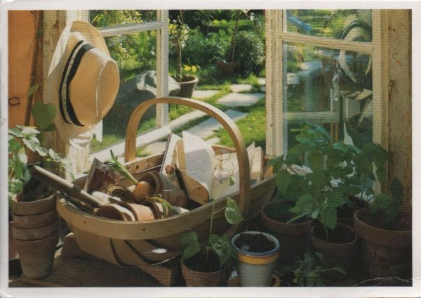 open window with plants in pots and gardening tools