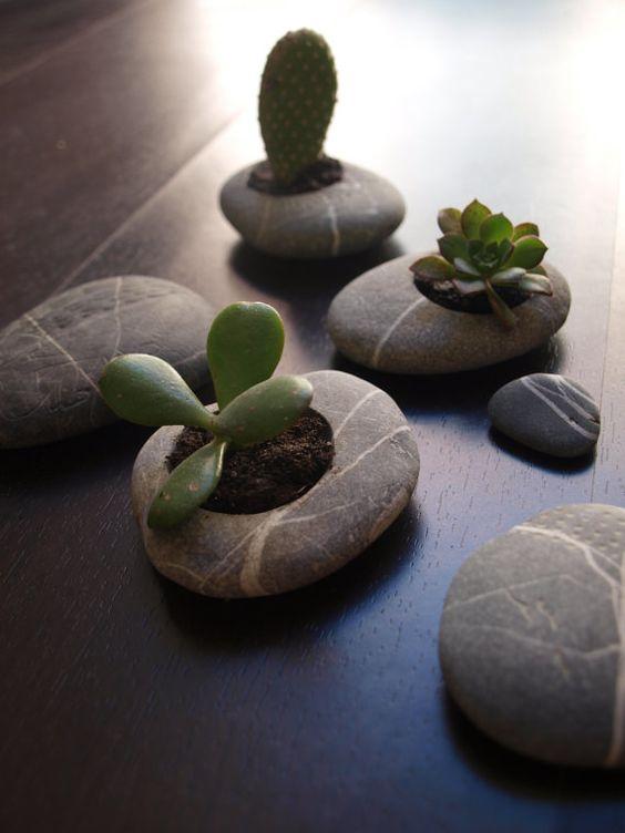 Vaso de pedras