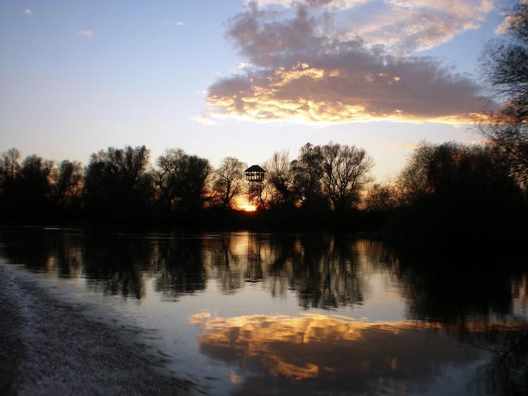 Sfârşit de noiembrie în Delta Dunării, pe Olguţa