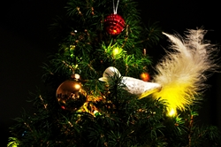 Weihnachtsbäumchen... :)