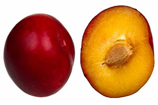 benefits_of_eating_plums_fruits-vegetables-benefits.blogspot.com(benefits_of_eating_plums_12)