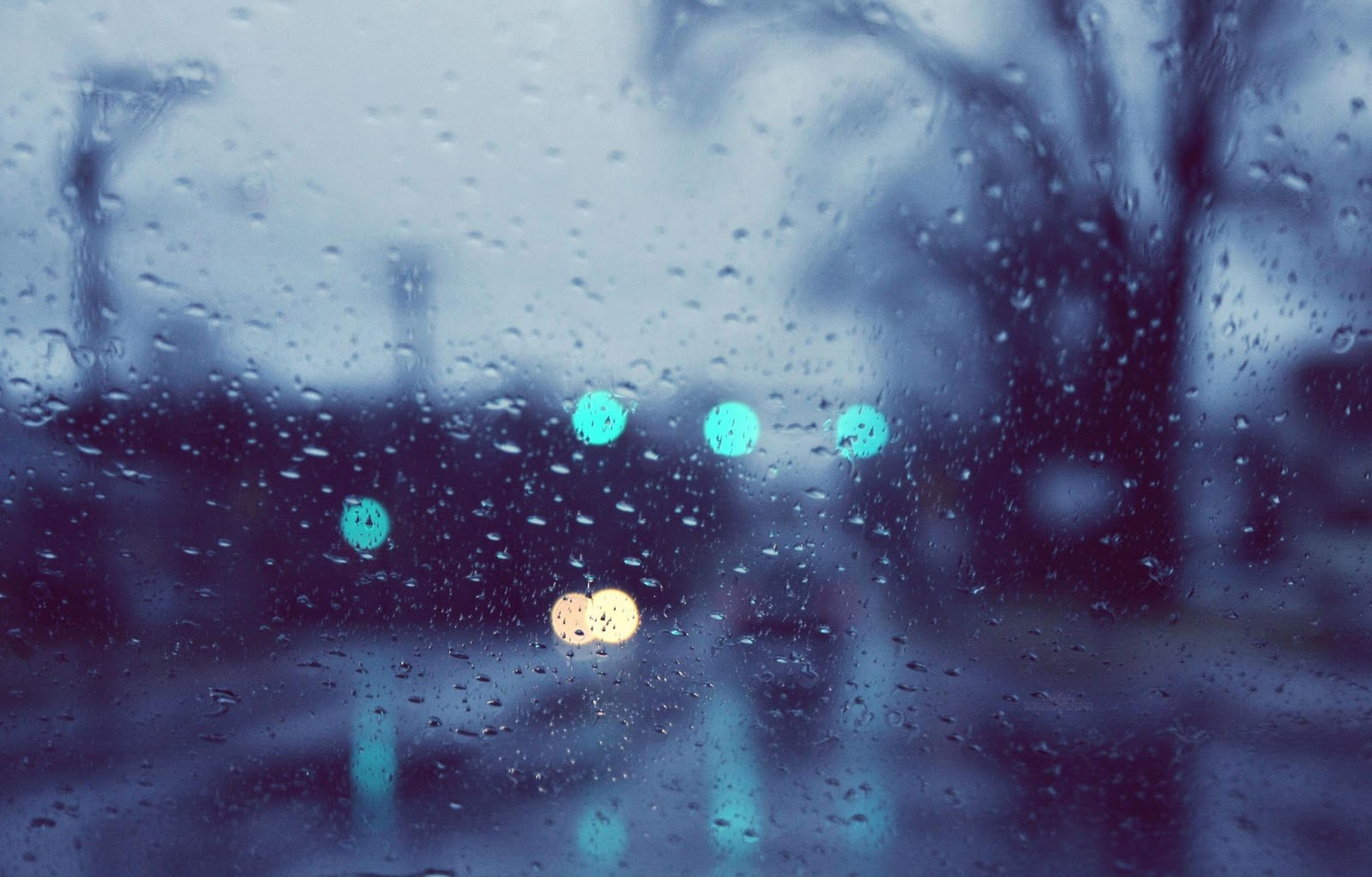 Rain Photography Hd Wallpapers High Definition Free