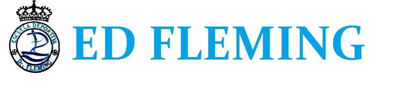 ED Fleming Futsal