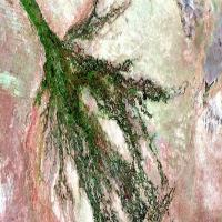 Satélite europeu disponibiliza imagens em alta resolução da Terra – encontre sua casa