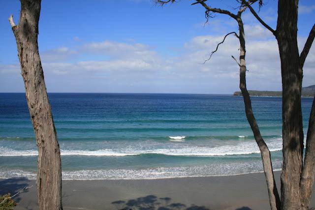 Coast Tasmania Australia - © CKoenig