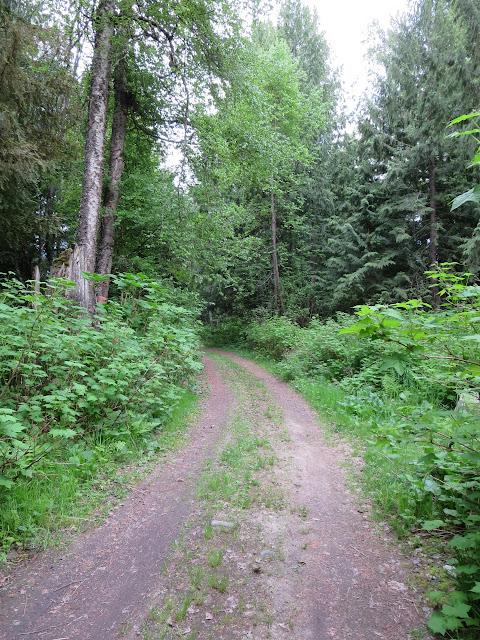 Crawford Bay Trail