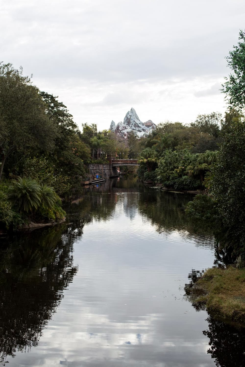 Disney Worlds, Animal Kingdom