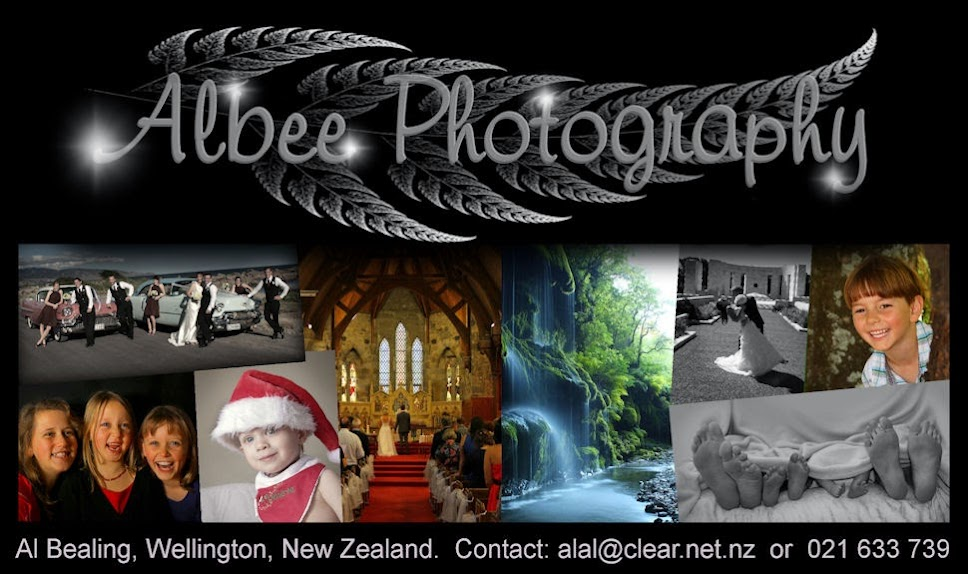 Albee Photography