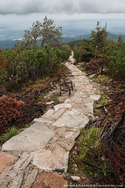Karkonosze - szlak na Słonecznik