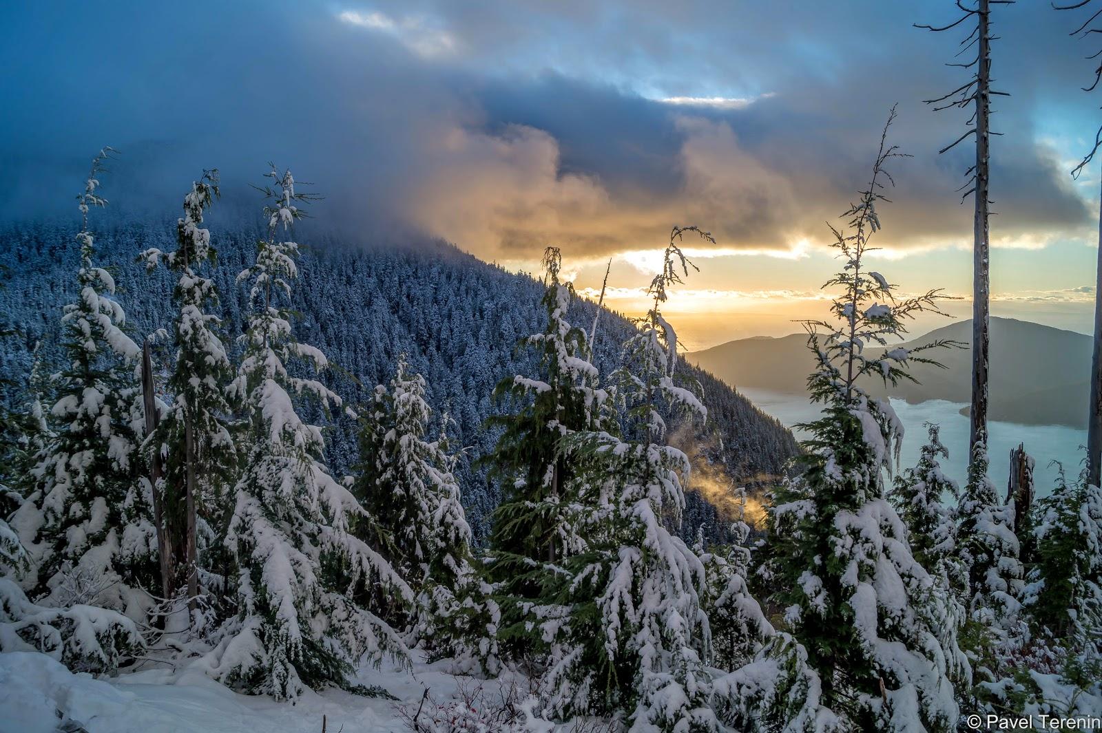 Как справляться с осенней хандрой в Ванкувере? Очень просто: сходить на пару часов в зиму