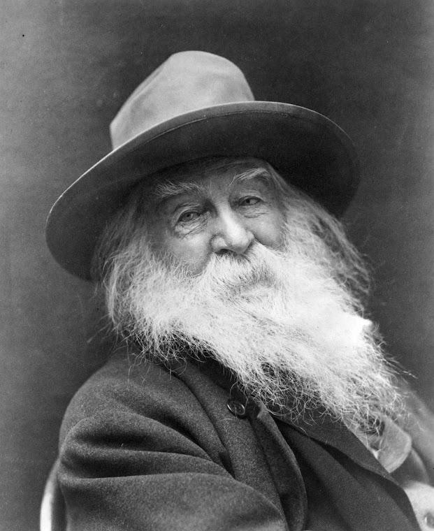 WW Beard