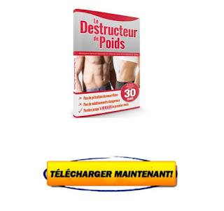 T l charger le destructeur de poids pdf gratuit avis michael wren livre pdf gratuit avis - Surveiller votre poids gratuit ...