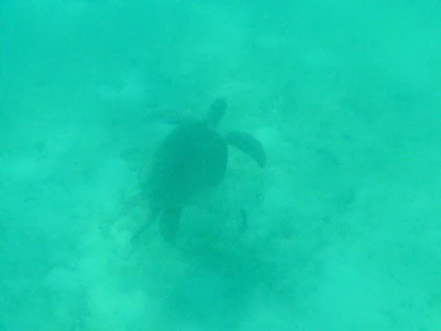 Perhentian - Tuna Bay Island Resort