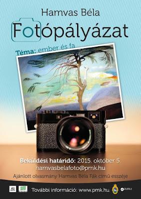 Hamvas Béla, fotópályázat, Ars et Vita Alapítvány, Pest Megyei Könyvtár, fák,
