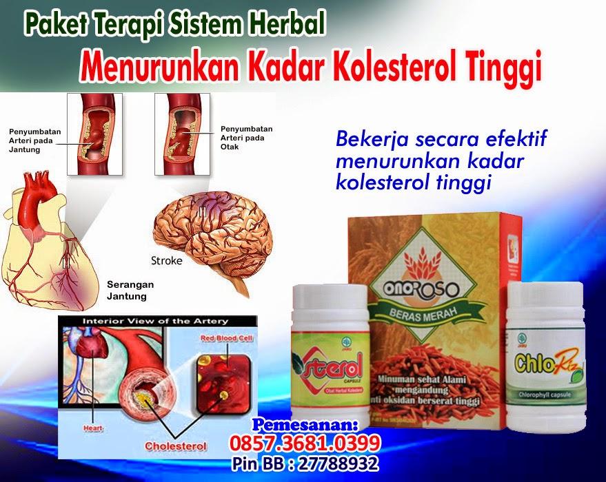Obat Kolesterol Tinggi Herbal