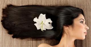 6 Cara Menebalkan Rambut Secara Alami ( Tradidisional ) Dan Sehat