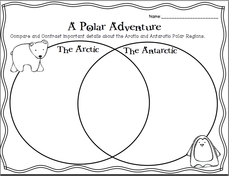 Buzzing About Second Grade  The Polar Regions
