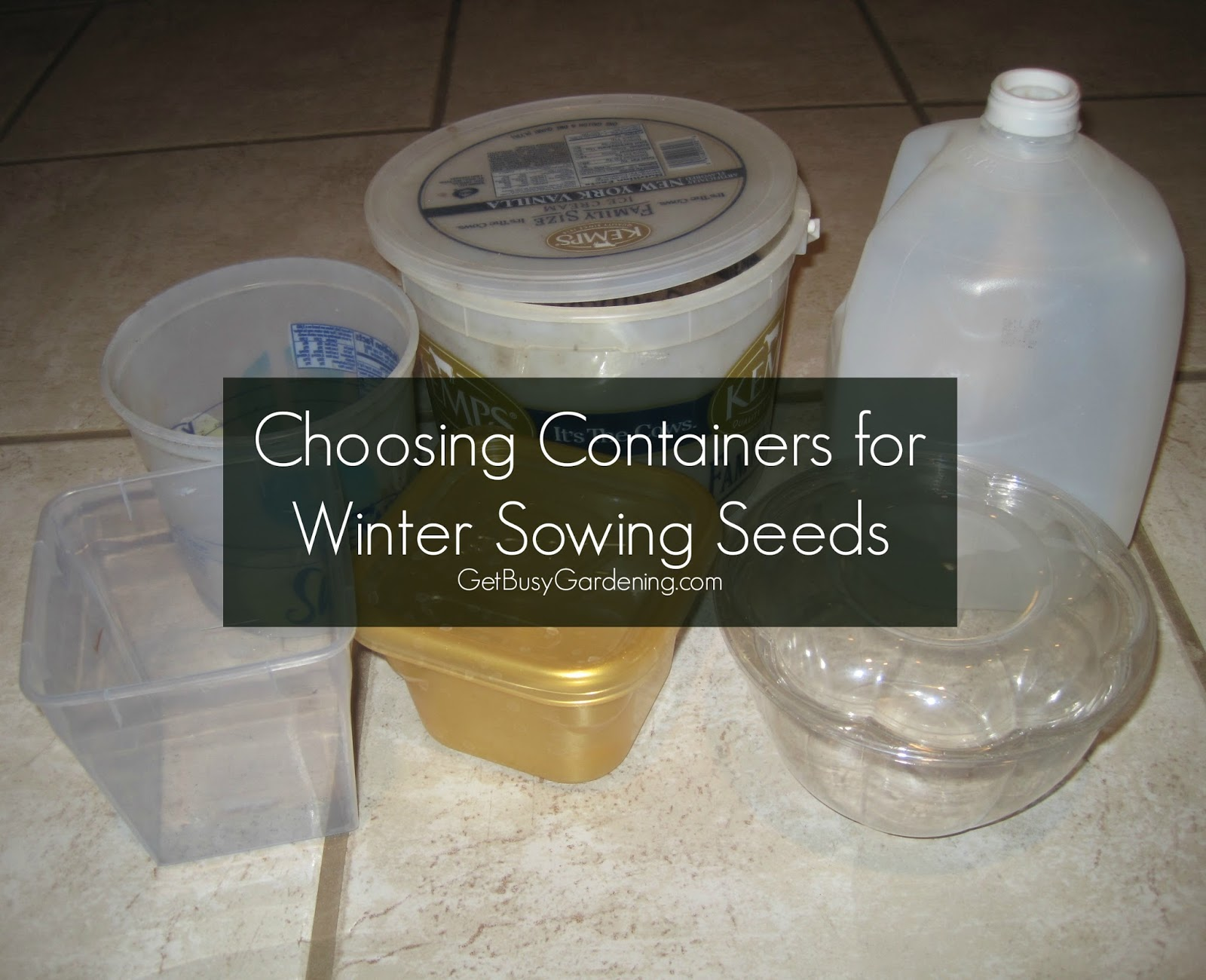 Choosing Containers For Winter Sowing Seeds