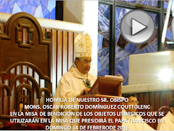 VIDEO DE LA HOMILÍA DEL SR OBISPO, DEL DÍA 6 DE FEBRERO DE 2016