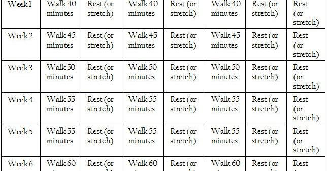Mind Over Mayo Wellness Coaching Beginner Ii 6 Week
