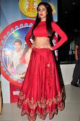 Sonal Chauhan Sizzling at Size Zero Premier-thumbnail-6